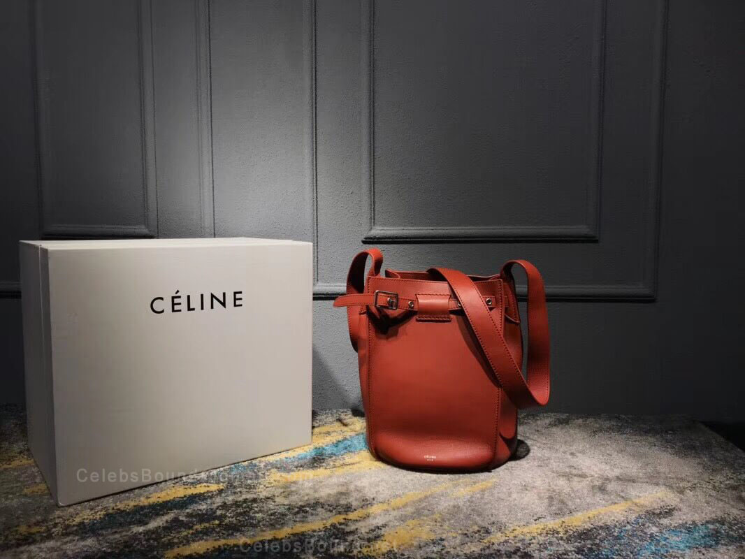 Celine Big Bag Bucket With Long Strap in Tawny Soft Bare Calfskin